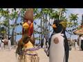 Surf'S Up Il Re delle Onde