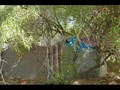Homeless Camps Two_0002.wmv