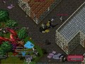 UO War of Shadows Town Invasion - Crimson Dragon