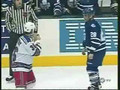 Leafs Fights