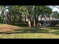 LIVE UNITED - CW Howard Insurance - Jeff