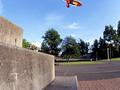 Skate Days