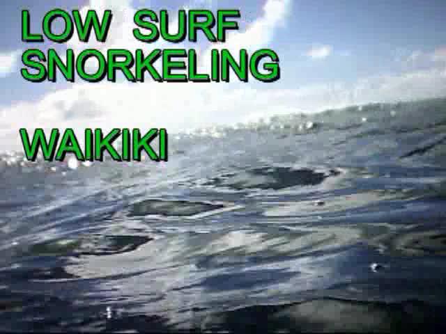 Low Surf Snorkeling Waikiki