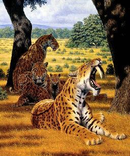Prehistory Today #4 (Pt.1)