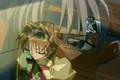 Kamikaze Kaitou Jeanne-Maron&Chiaki-You&Me