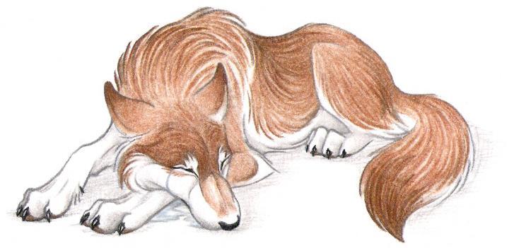 Wolves Numb