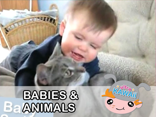 Ultra Kawaii - Babies & Animals