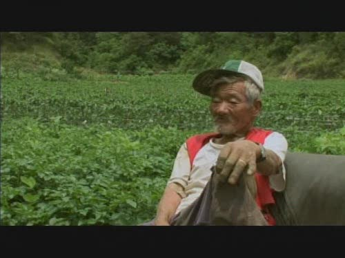 Old Partner Korean Documentary, Special 4 Grandfather