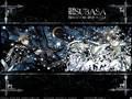 Tsubasa chronicle - you are my love
