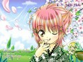 Shugo Chara and Mizuiro Melody Song