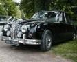 Classic Jaguar Gallery