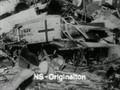 Warum sie Hitler waehlten - Bekenntnisse von NSDAP-Jungwaehlern