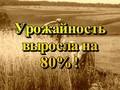 Istorija.Rossii.XX.veka.10