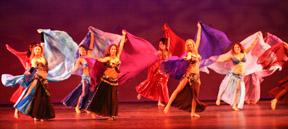 Veils Belly Dance