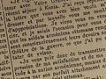 Tuerken gegen Armenier - Voelkermord im 20. Jahrhundert