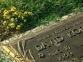 David Koresh - Prophet des Todes