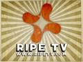 RipeTV - In Bed w/ T&A - Tease & Answer