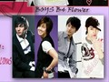 BOys Over Flower DMV