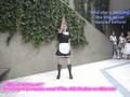 Maid Attack (01/15/2006)