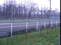 Me at Automobile Racing Track in Monza - Italy