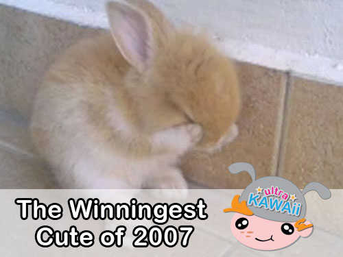 Ultra Kawaii - The Winningest Cute of 2007
