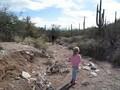 Tucson walking down wash