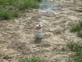 Rauch 1.avi