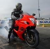 2008 Suzuki Hayabusa: Better and Badder!