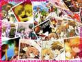 Sakura&Syoran(Feather of Love)