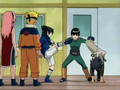 Evolution:A Tribute To Rock Lee