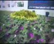 Tac phong minh hoa san pham.avi