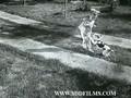 Cipelice Na Asfaltu (1956)