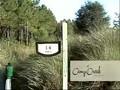 Hot Golf - Florida Emerald Coast Part 4