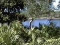 Hot Golf - Florida Emerald Coast Part 5