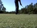 Hot Golf - Florida Emerald Coast Part 6
