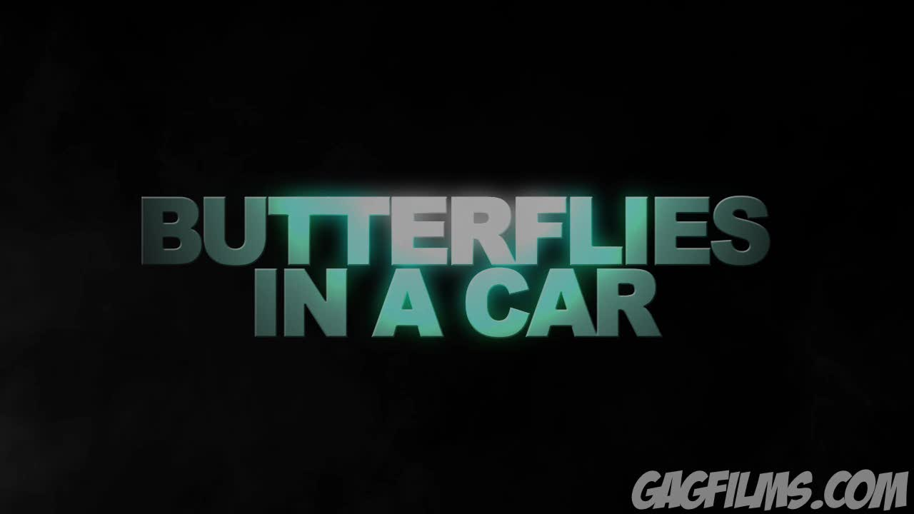 Butterflies in a Car