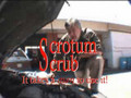 Scrotum Scrub