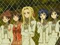 Strawberry Panic 22 [Anime4ever.info]