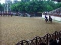 Horseback ceremony video #1