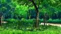 2009/08/28 Tameiki 3