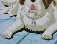 Shin Hurricane Polymar OVA 1