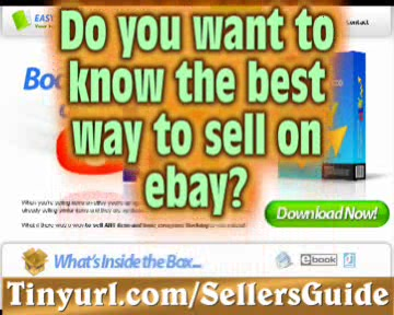 Download How to maximize Your Sales on eBay Package