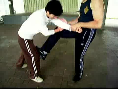 Wing Chun Kicking and Popai 15