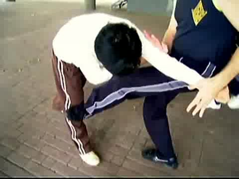 Wing Chun Kicking and Popai 19
