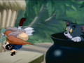 Tom & Jerry Cartoon