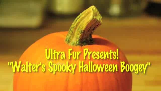 Ultra Fur Halloween - Ultra Fur