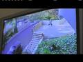 Rob & Big – New Season – Net Gun clip