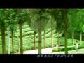 [MV] Starlight of Heart
