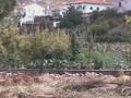Portugal 2004 Episode 1