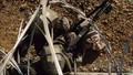 Halo Live Combat Part 2 HD